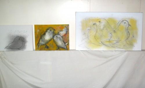 Birds in Basil's studio...